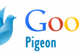 SEO Google Pigeon : mis à jour l'international
